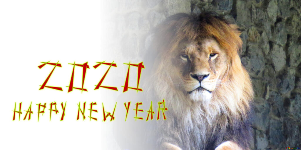Happy New Year 2020 Lion mane
